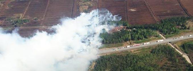 Skåne'de orman yangını