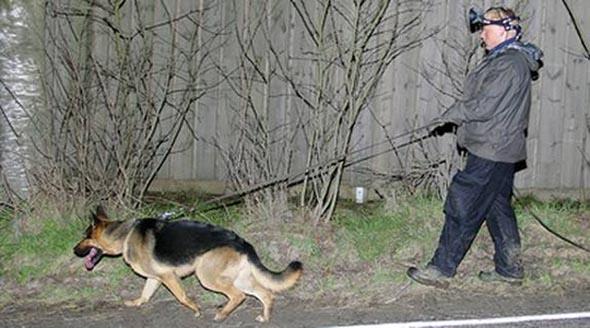 Skogås bölgesinde 9 yaşındaki kızı kaçıran tutuklandı