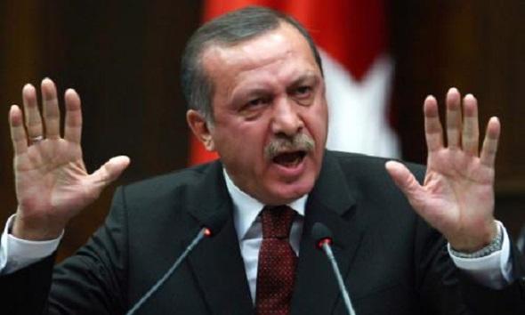 CUMHURBAŞKANI ERDOĞAN'IN TARİH DERSİNE GEREKSİNMESİ VAR..