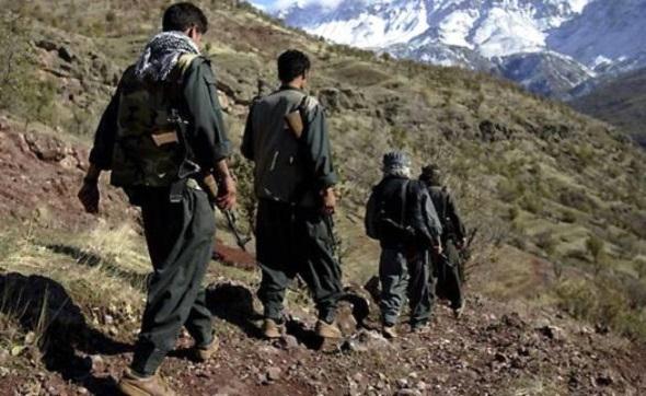 PKK'NİN SÖZDE 'İSKANDİNAVYA SORUMLUSU' YAKALANDI